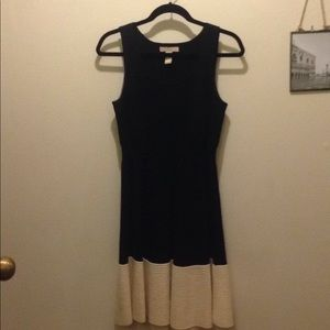 Banana Republic Black & White Fit and Flare Dress